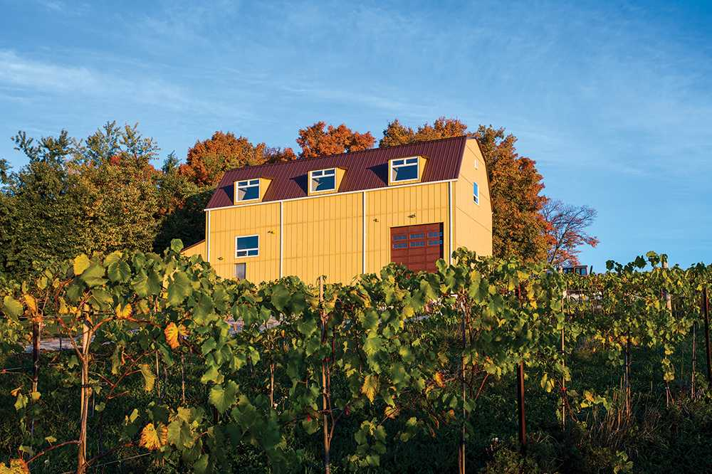 200937-The-Creemore-Hills-Winery-40x60-Commercial-Yellow-Creemore-ON-Canada-2