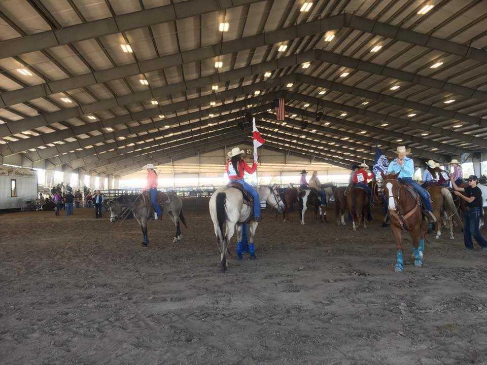 florida horse park covered riding arena