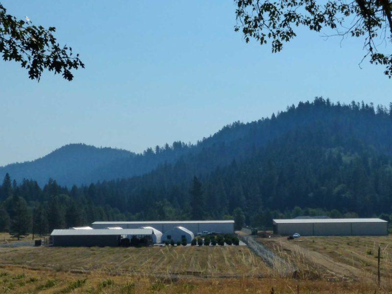 301021-Draper-Valley-Farms-Grow-Vinyard-60x200-Gray-Color-TBD-Selma-OR-UnitedStates
