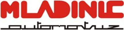 Mladinic - Chile