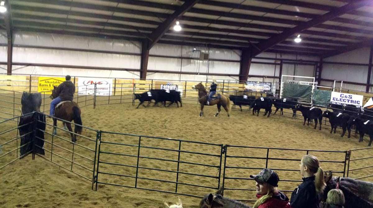 equestrian_building_ceekside_riding_arena