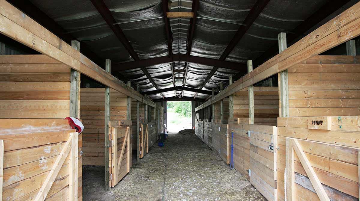equestrian_building_horse_barn