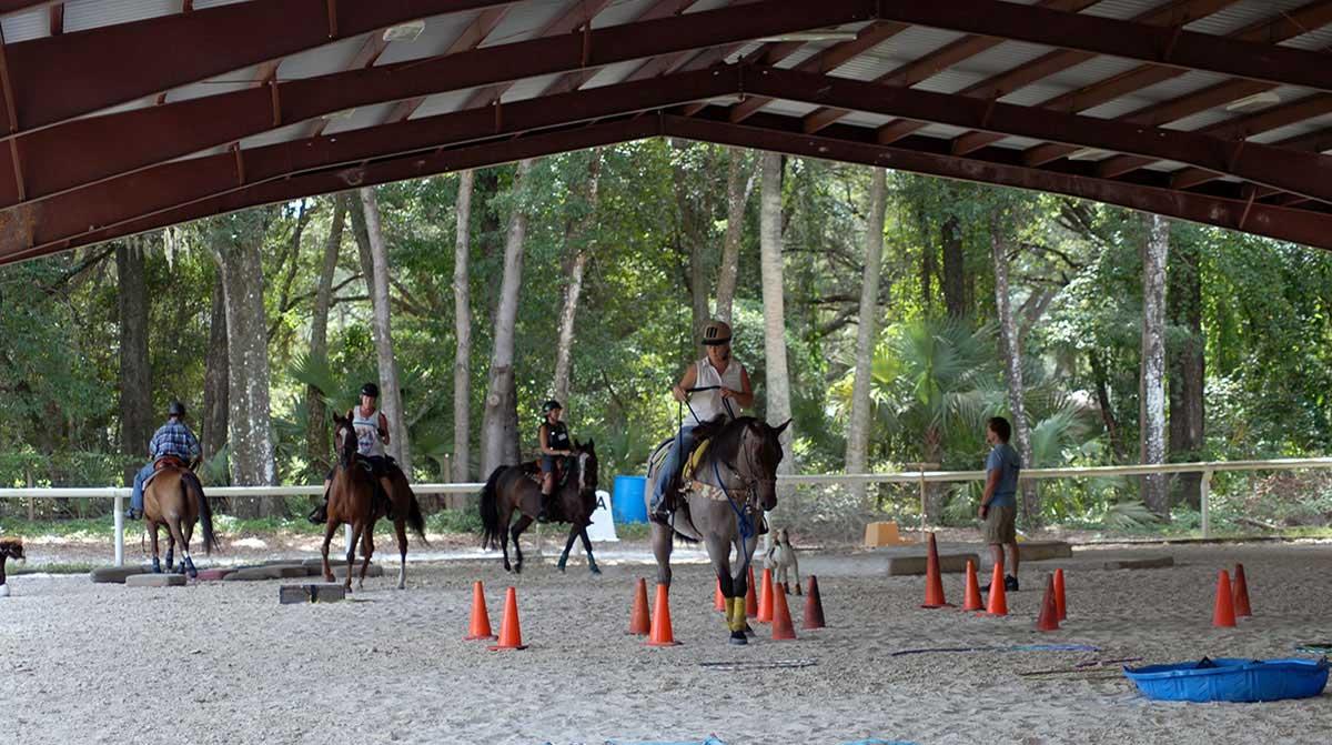 Equestrian Horse Training Building